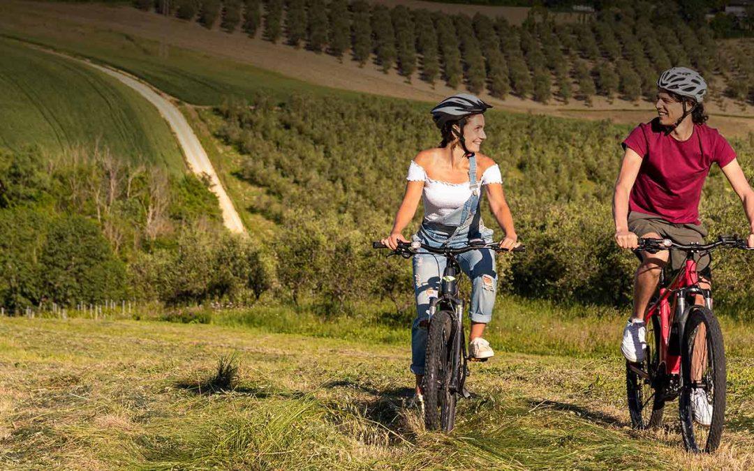 Wine Tour in Valconca: una storia di famiglia