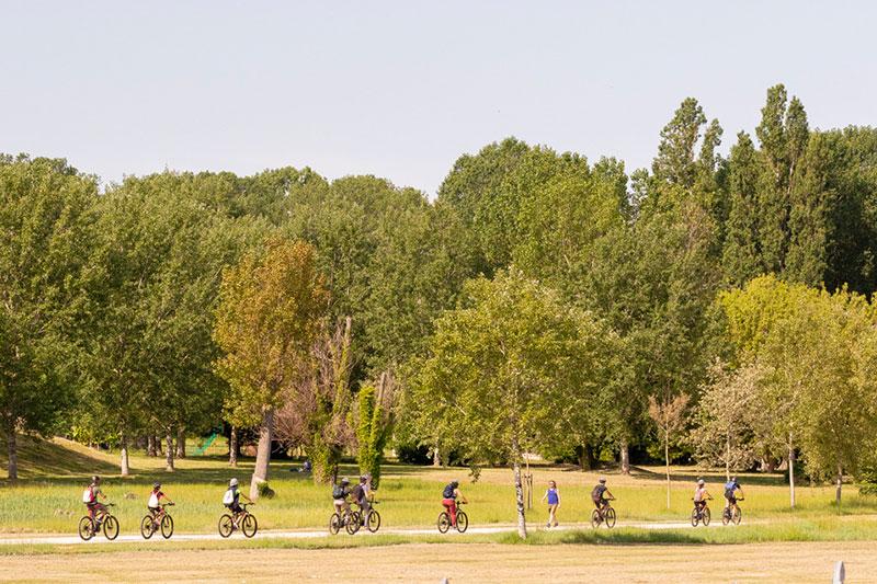 le-15-cose-da-vedere-a-rimini-in-bicicletta---nel-parco-marecchia